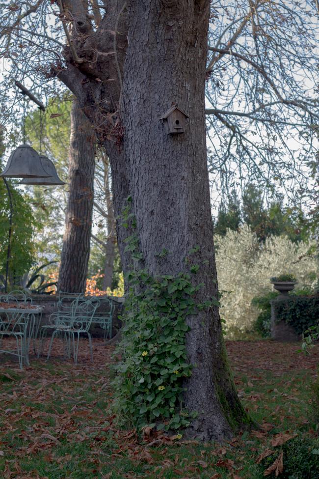 il giardino e la dimora location matrimoni roma viterbo